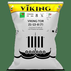 01_viking_tor