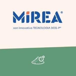 Linea Mirea-Tecnologia DOS-P